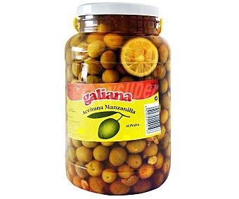 Galiana Aceitunas aliñadas Tarro de 2,5 Kilogramos