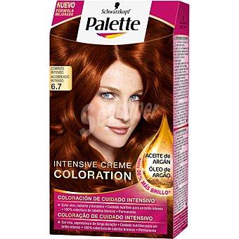 Palette Schwarzkopf Tinte Intense Color Cream cobrizo intenso nº 6.7 coloración de cuidado intensivo Caja 1 unidad
