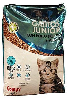 Compy Comida gatito y gata gestante o en lactancia (comida seca) Paquete de 800 g