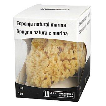Les Cosmétiques Esponja Natural marina 1 ud