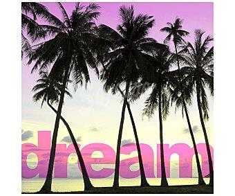 IMAGINE Cuadro con la imagen de unas palmeras en una playa al atardecer y dimensiones de 28x28 centímetros 1 unidad