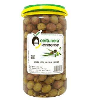 Aceitunera Jiennense Aceituna negra rayada 1,1 kg