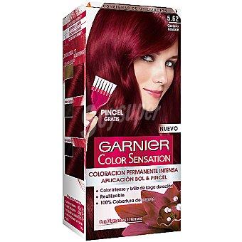 Color Sensation Garnier Tinte castaño granate nº 5.62 coloración permanente intensa caja 1 unidad pincel gratis Caja 1 unidad