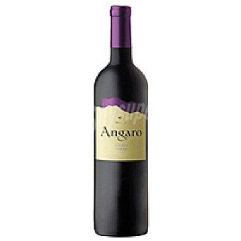 Angaro Vino Tinto Argentina Botella 75 cl