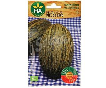 HA-Huerto y Jardín Semillas ecológicas para sembrar melón de la variedad Piel de sapo 1 sobre