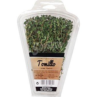 Herbex Tomillo fresco Estuche 20 g