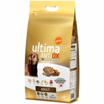 Ultima Affinity Alimento antiox para perro adulto 5 kg