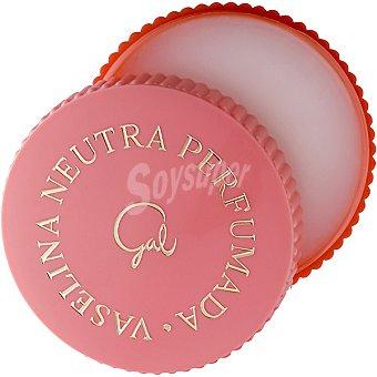 Gal Vaselina neutra perfumada Caja 40 g
