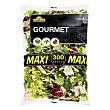 Ensalada gourmet maxi (escarola rizada, canonigo, radicchio) Bolsa 300 g Verdifresh