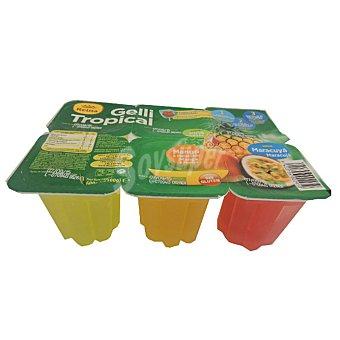 Reina Gelli Sweet gelatina sabores tropical 2 piña + 2 mango + 2 maracuyá sin gluten Pack 6 unidades 100 g