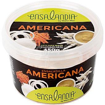 Mahn Mac Ensalada americana Envase 450 g