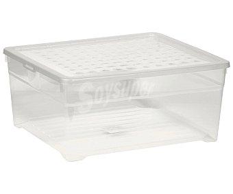 Curver Caja de ordenación multiusos con tapa, de capacidad, 39x34x17 centímetros curver 18,5 litros