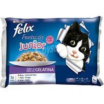 Felix Purina Fantastic multipack Especial Gatitos Pack 4x100 g