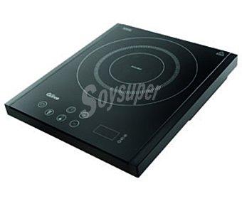 Qilive Vitro de inducción Q.5415 negra, temporizador 180m, 10 niveles potencia, 1 zona cocción negra, temporizador 180m, 10 niveles potencia, 1 zona cocción