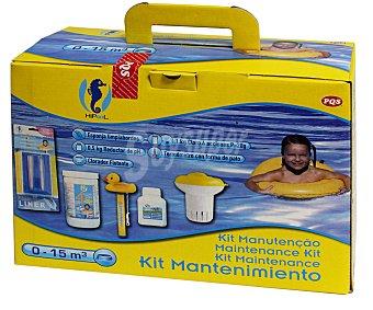 Pqs Kit de arranque para piscinas de hasta 15 metros cúbicos, que incluye: pastillas multifunción 4 en 1 de 20 gramos - 1 kilo, dosificador flotante, termómetro con forma de pato, reductor del PH - 0.5 kilos y esponja limpiabordes 1 unidad