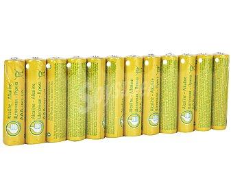 Productos Económicos Alcampo Paquete de 12 pilas alcalinas del tipo AA o LR06 alcampo