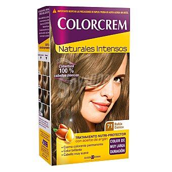 Colorcrem Tinte nº 71 rubio ceniza 100 ml 1 ud