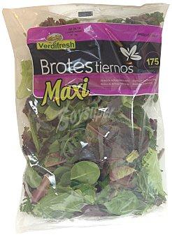 Verdifresh Ensalada brotes tiernos maxi (lechuga batavia, lollo rossa, espinaca, rucula) Bolsa 175 g