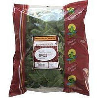 Latas Espinaca fresca Bolsa 400 g