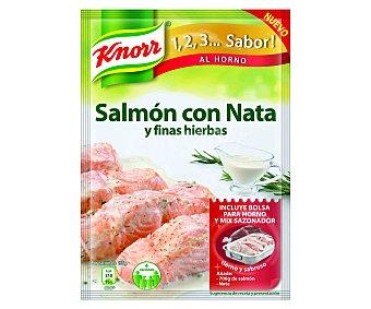 Knorr Preparado para el Horno (sazonador) Salmón nata/finas Hierbas 1,2,3... Sabor! 28g