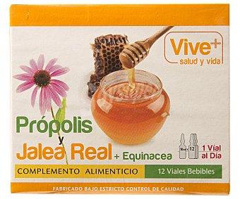 Viveplus Propolis/jalea Real + Equinacea 120 Gramos