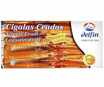 Delfín Cigala N.3 bandeja 17/20 1KG