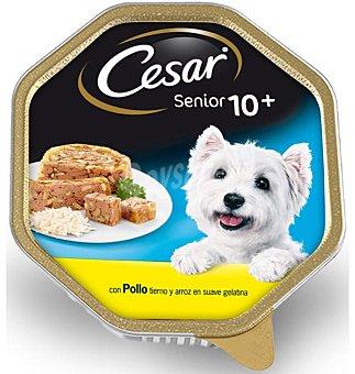 CESAR Alimento para perro senior con pollo y arroz Tarrina de 150 g