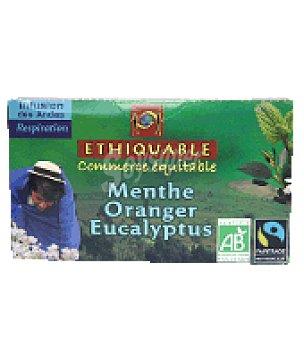 Ethiquable Infusión menta hierba limón bolsa 20 ud