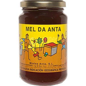 MEL DA ANTA Miel de los bosques de Galicia I.G.P. frasco 500 g Frasco 500 g