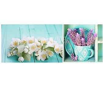 IMAGINE Cuadro con las imágenes de diferentes flores sobre o dentro de diferentes superficies y dimensiones de 30x80 centímetros 1 unidad