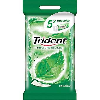 Trident Chicles de clorofila stick sin azúcar Pack 5 envase 5 unidades