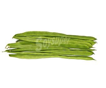 HORTALIZA ECOLÓGICA Judia verde ecológica, bandeja 500 gramos