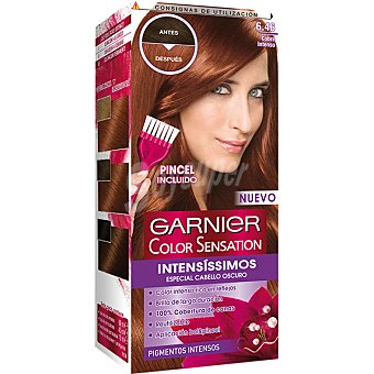 Color Sensation Garnier Tinte intense N.6.46 Caja 1 unid
