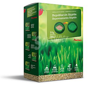 Auchan Semillas para plantar cesped para reparar áreas dañadas 1 kilogramo