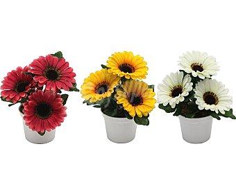 Essencial Maceta decorativa con flores gerberas artificiales surtidas en colores, 19 cm, essencial