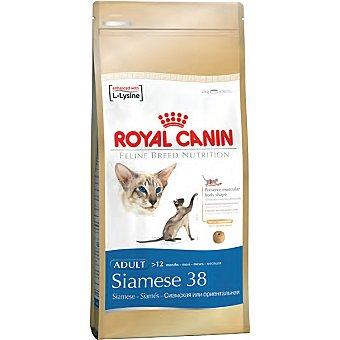 Royal Canin Alimento especial para gato siamés de + 1 año Siamese 38 Bolsa 2 kg