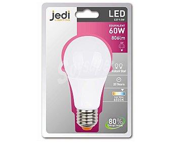 JEDI Bombilla led esférica 9.5 Watios, casquillo E27 (grueso), luz fría 1 unidad