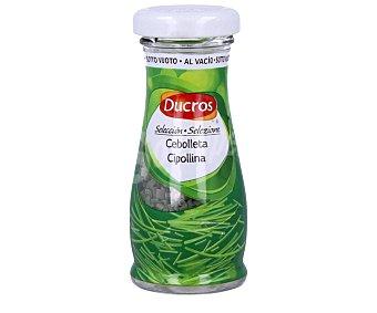 Ducros Cebolleta liofilizada 2 gramos