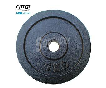 FYTTER Disco muy resistenete y perfectamente adaptable a las barras de 2.8 cm de diámetro 1 Unidad
