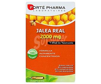 Forte Pharma Jalea Real más miel de Tasmania 20 Ampollas
