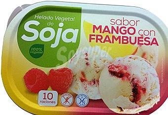 Helado tarrina vegetal soja sabor mango con frambuesa 1 l