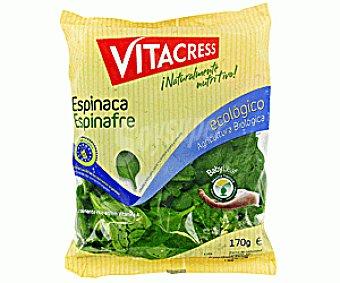 Vitacress Espinacas Brotes Ecológicos Bolsa de 170 gramos