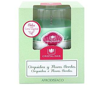 Cristalinas Vela de cera natural con aroma orquídea y flores verdes cristalinas