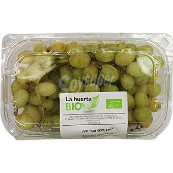 LA HUERTA uva ecológica sin semilla Tarrina 500 g