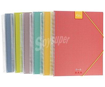 Grafoplás Carpeta clasificadora con 30 fundas tamaño A4 , grafoplas