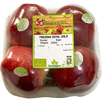 E.sanchez Manzana royal gala ecologica peso aproximado bandeja 700 g