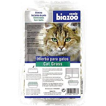 Biozoo Axis Hierba para gatos Envase 1 unidad