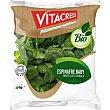 Espinacas baby ecologicas bolsa 150 g Vitacress