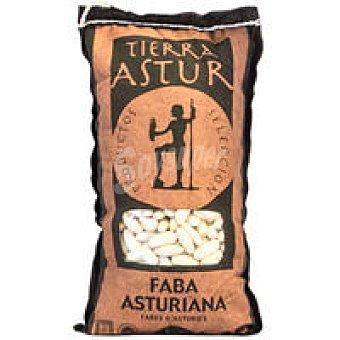 D.O. TIERRA ASTUR Fabes de Asturias Bolsa 1 kg
