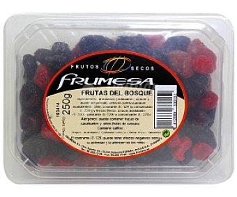 FRUMESA Frutas del bosque deshidratadas Tarrina de 250 Gramos